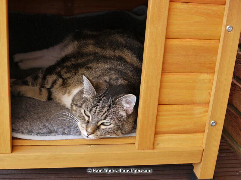 sammy_2010-04-24lumix073